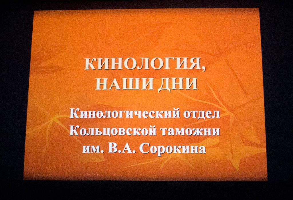 dsc-9280-2-40396645572-o.jpg