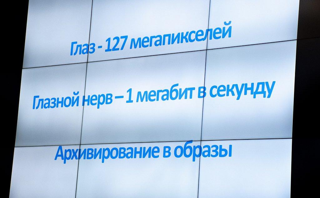 DSC-7541.jpg